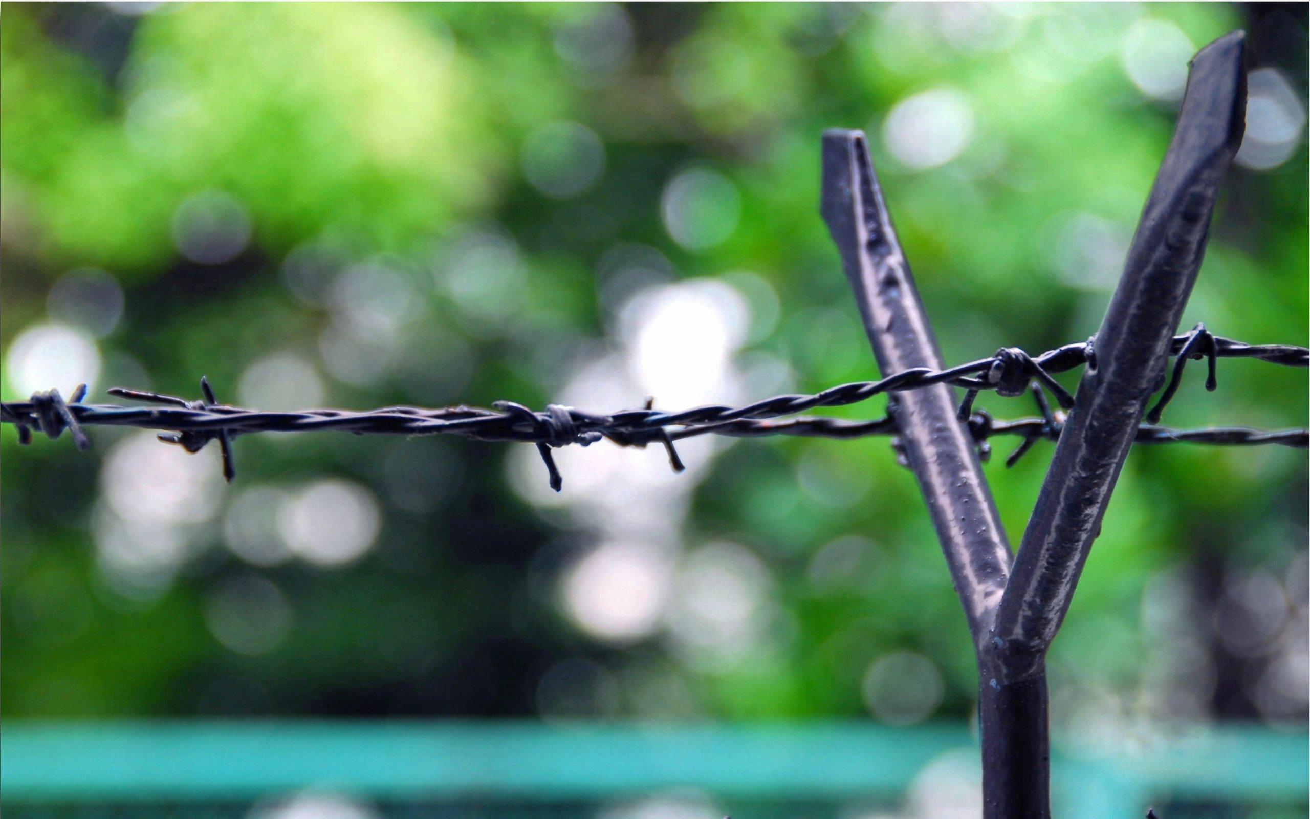 Колючая проволка на заборе  № 1701870  скачать